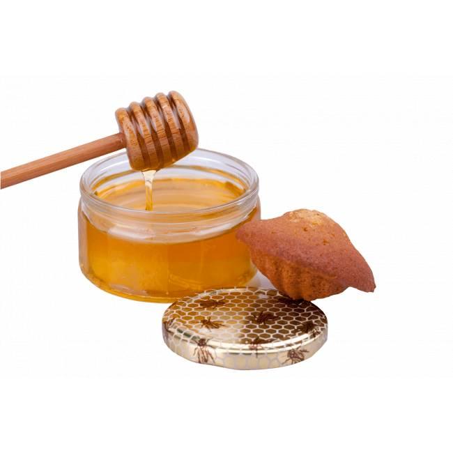 Madeleines au miel
